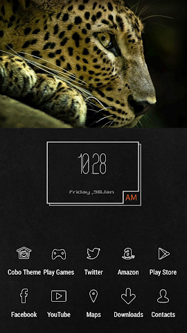 android Simple Cold Cheetah Theme Screenshot 0