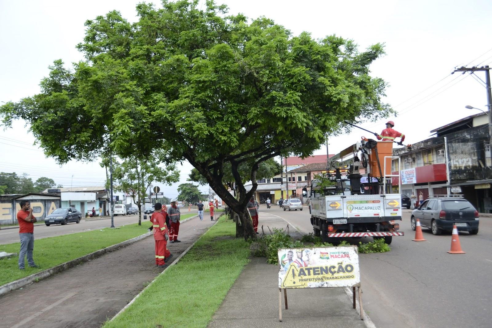 Programa Macapá Mais Viva está plantando milhares de árvores por toda a cidade. (Fonte: Prefeitura de Macapá)