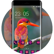 Purple red head beautiful bird theme APK