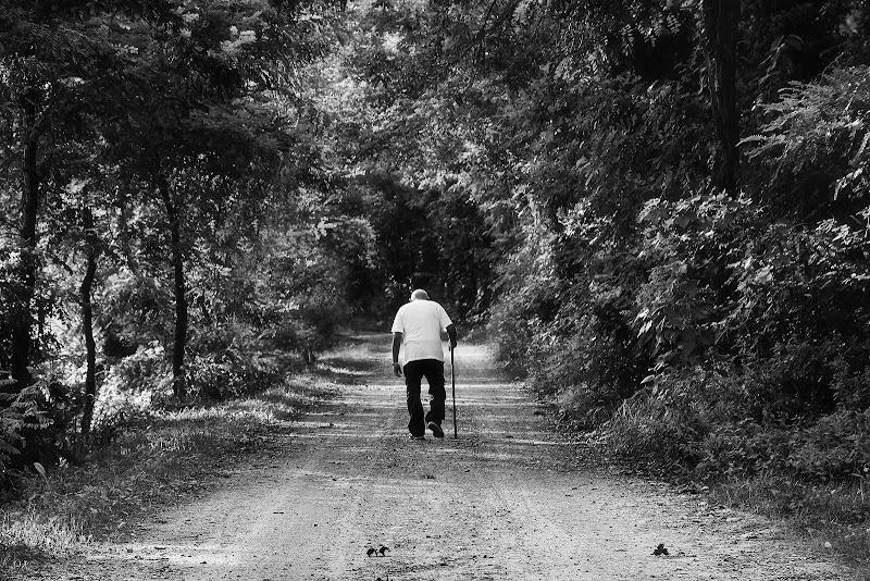 Solo, nell'ultima parte del cammino... di BASTET-Clara