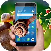 Snail in phone joke