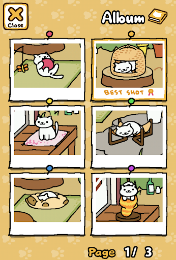 Neko Atsume: Kitty Collector 1.11.7 Windows u7528 9