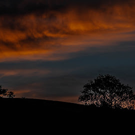 Early morning sky by Andrew Lancaster - Landscapes Cloud Formations ( sky, orange, shadow, formations, blue, light, sunset, clouds, trees, landscape )