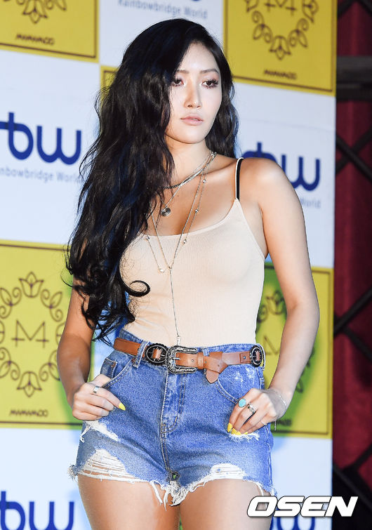 hwasa netizen body figure