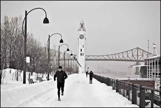 Photo: www.leannestaples.com  Port de Montréal