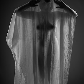 Sexy Ghost by Rob James - Nudes & Boudoir Artistic Nude ( studio, model, nude, black and white, sheer, boobs, sheet )