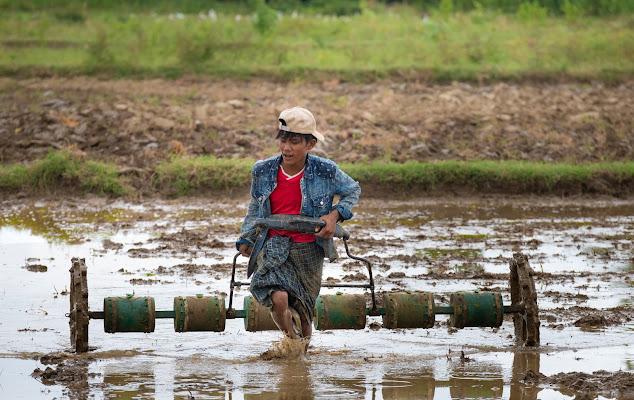 Agricoltura sostenibile di tonino_de_rubeis