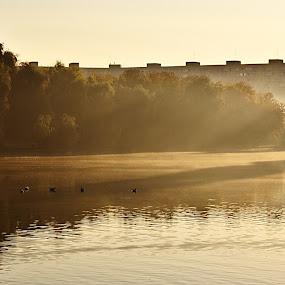 Ordinary morning by Nicu Buculei - City,  Street & Park  City Parks ( park, fog, lake, morning, mist, city )