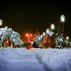 Road to winter by Klaudia Klu - Uncategorized All Uncategorized