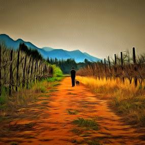 A walk in the vineyards by Glenn Visser - Landscapes Prairies, Meadows & Fields ( farm, vineyards, road, walk )