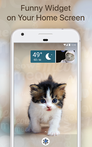 Weather Whiskers screenshot