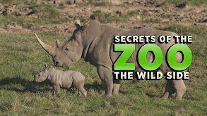 Secrets of the Zoo: The Wild Side thumbnail