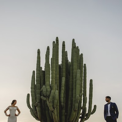Fotógrafo de bodas Ildefonso Gutiérrez (ildefonsog). Foto del 01.01.1970
