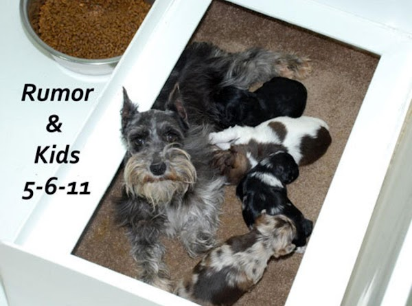Picture with Mommy Rumor and her kids.