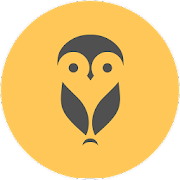 Meeting Owl