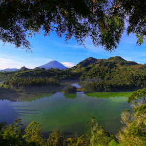 Telaga Warna Lake by Septyan Lestariningrum - Landscapes Forests ( mountains, dieng, indonesia, lake, landscape )