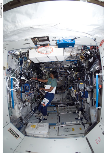 Wilson in the US Lab during Expedition 16 / STS-120 joint operations