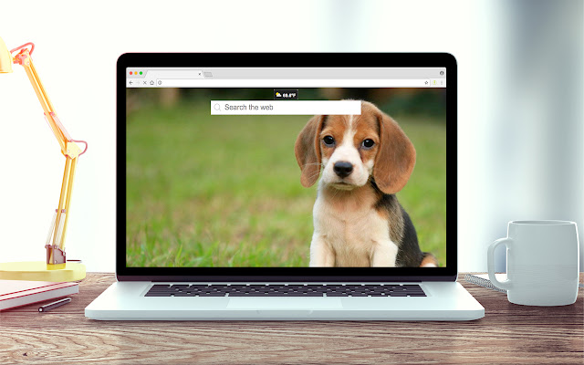 Beagles Wallpapers New Tab Theme