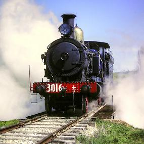Blowing Steam by Peter Keast - Transportation Trains ( railway, steam train, train, transportation,  )