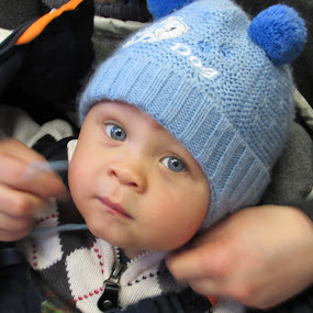 Baby Blue Eyes by Anne Santostefano - Babies & Children Child Portraits ( babies, children,  )