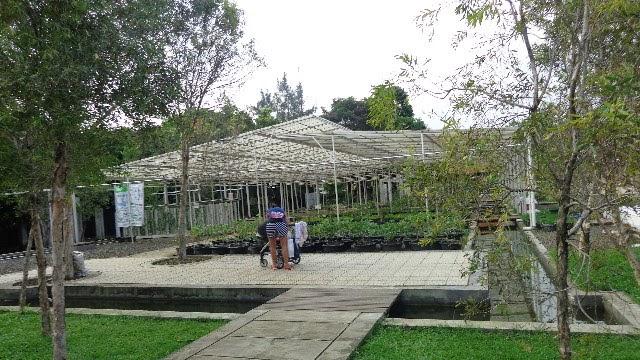 wisata kebun di kuntum farm field bogor