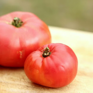 Fast Fresh Tomato Sauce