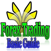 Forex Trading Basic Guide