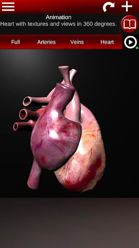 Circulatory System in 3D (Anatomy) 1.58 screenshots 2