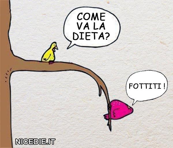 un uccellino chiede ad un'altro penzolante da un ramo: come va la dieta? E lui risponde: fottiti!