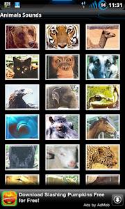 Best Real Animal Sounds Free screenshot 0