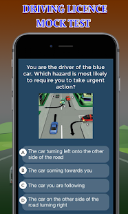 Driving Licence Online - náhled