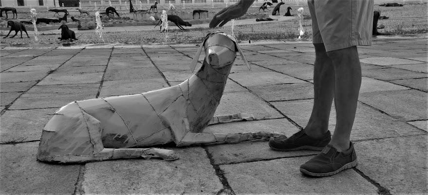 cane metallico addomesticato di elibetta