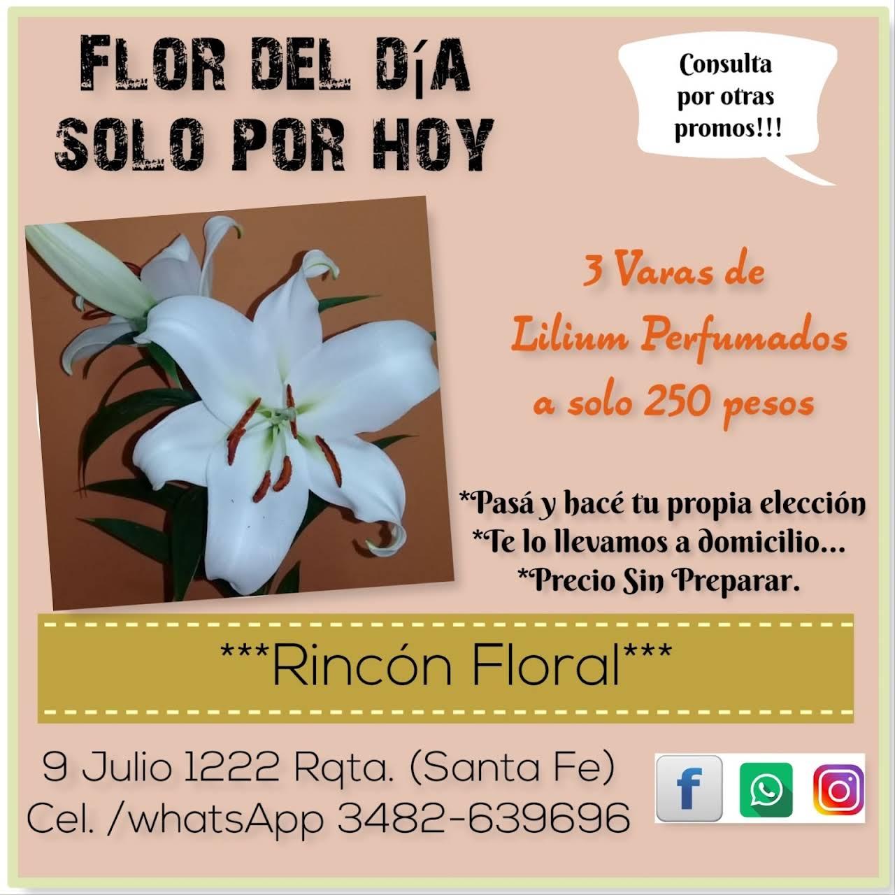 Rincón Floral Demustra Tu Amor Con Detalles
