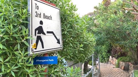 KYK   'Groot' Clifton-strandpartytjie het die moord op UK-student voorafgegaan: veiligheidswag - TimesLIVE