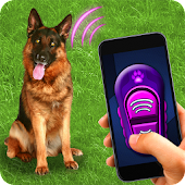 Training Dog Clicker Trinket