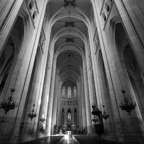 Saint-Pierre Cathedral by Pascal Bénard - Buildings & Architecture Statues & Monuments ( black and white, interior, building, monotone )