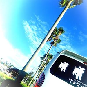 ハイエースバン TRH200Vのカスタム事例画像 シュナ 🐾🐶🐾CT2期生さんの2020年09月03日05:10の投稿