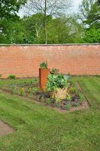 Photo: Meikool  (Sjellik) in bloei in de nieuwe culinaite tuinen van Cook and Herb
