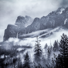 Yosemite-in the mist by Mike Moss - Black & White Landscapes ( don smith, yosemite, gary hart )