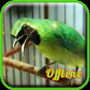App Masteran Cucak Ijo Full Isian APK for Windows Phone