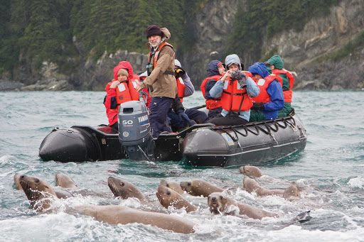 Travelers taking a Lindblad Expeditions tour observe a sea lion colony in Inian Pass near Cross Sound, southeastern Alaska.