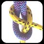 Премиум Knot Video Guide FULL временно бесплатно