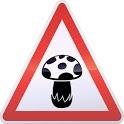 GeoMushroom : Mushroom Mycology icon