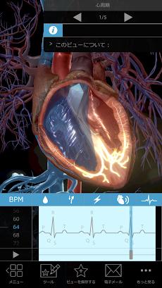 生理学と病理学:生体プロセスと疾患のおすすめ画像1