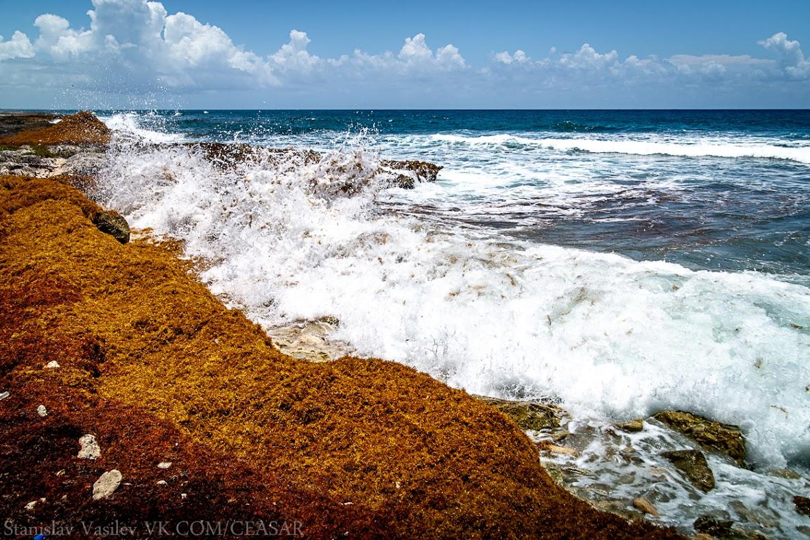 Берег в километре от пляжа Акумаль