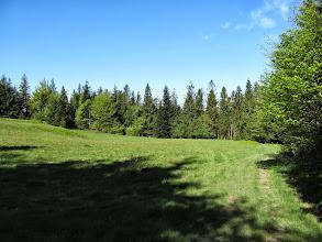 Photo: 16.Jedna z wielu polan na Łopieniu.