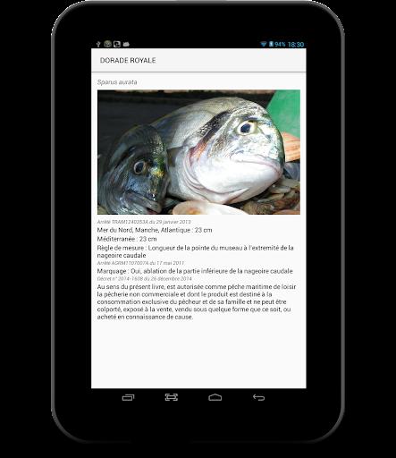 LaMaille pour la pêche en mer 1.1.056-release-3-Multi-APK screenshots 2