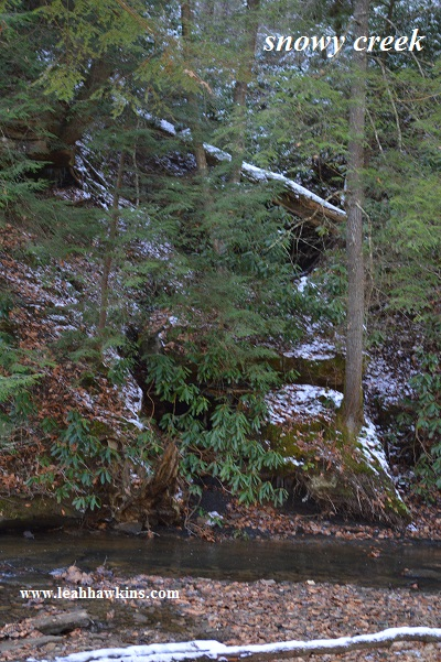 red river gorge snowy creek