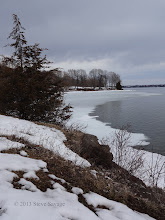 Photo: The shoreline. Beautiful, isn't it?
