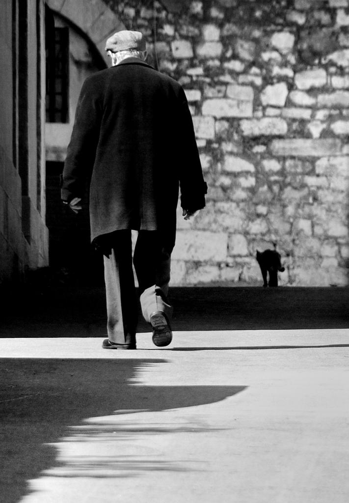 O viecchio e 'a gatta... di Salvatore Gulino